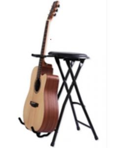 Guitar Stool w/ stand